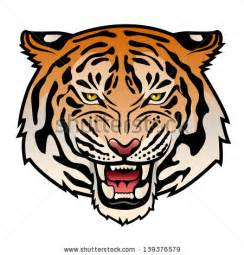 tiger face vector stock photos images amp pictures