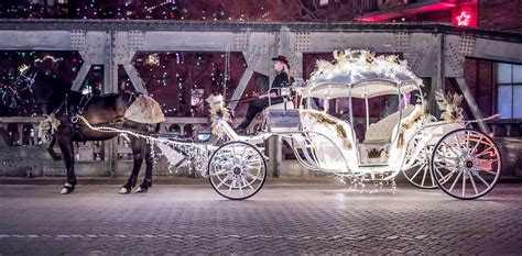 lights carriage rides dallas light up dallas carriage ride reservations