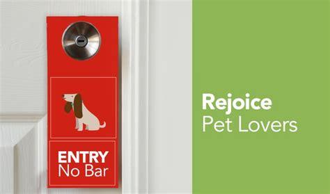 best pet friendly hotels 12 best pet friendly hotels in india