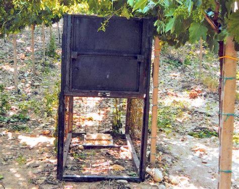gabbie per cinghiali bracconaggio sequestrata un altra gabbia a vasto in