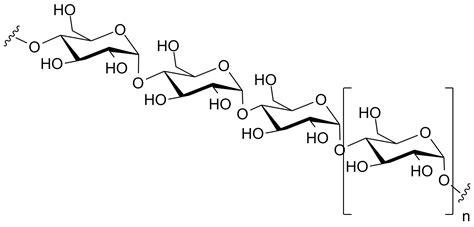 diagram of a polysaccharide polysaccharide