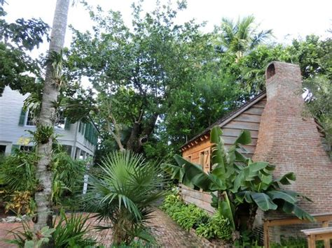 Audubon House And Tropical Gardens by Green And Lush Picture Of Audubon House Tropical