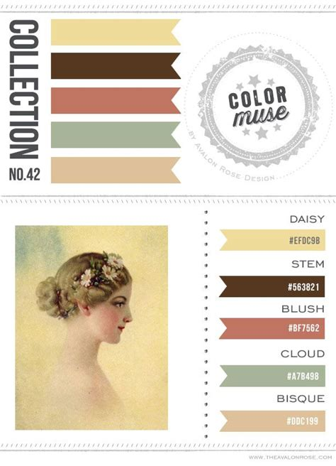 color muse color muse collection no 42 avalon rose design