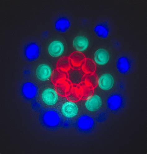 the light show projector scientificsonline