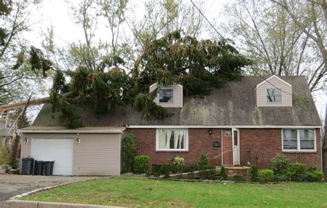 tree falls on house insurance tree falls on house what to do best house design
