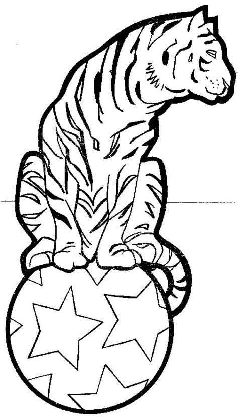 Circus Tiger Coloring Page | free coloring pages of circus tiger