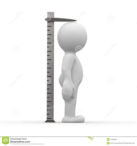picture height tall ruler stock illustration image of cute measuring