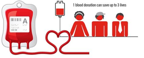 Does Donating Blood Help Detox by Letbestrong Page 2