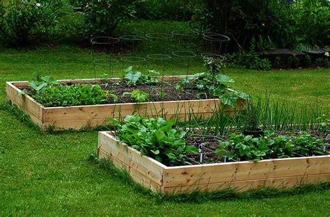 fare un orto in giardino orto rialzato facile da fare idee green