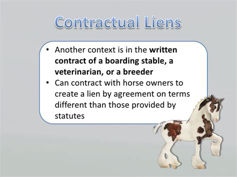 Multi Jurisdictional Comparison of Equine Liens