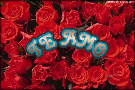 imagenes te amo flor imagenes de te amo con flores imagui