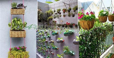 Pot Anggrek Dinding menghijaukan rumah di lahan terbatas allia furniture