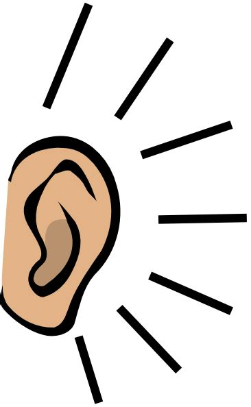 cartoon ear clipart best