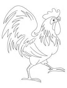 rooster coloring page rooster coloring pages free coloring home