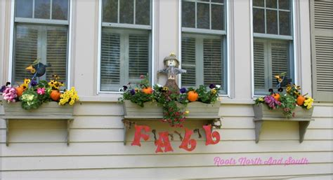 north window plants mums the word tips for adding fall color to the garden