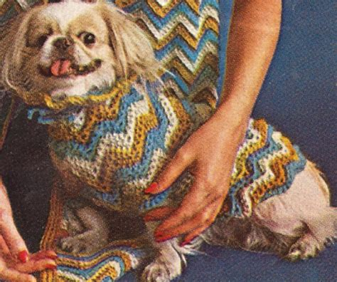 pattern crochet dog sweater vintage dog sweater coat hat puppy crochet pattern eb