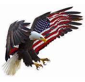 American Eagle Flag Magnet Decal  Nostalgia Decals