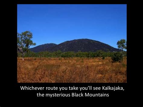route through florida cattle country you will see miles of cattle welcome to cooktown
