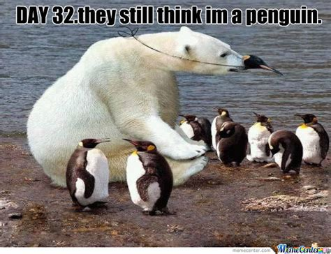Polar Bear Meme - polar bear in disguise by recyclebin meme center