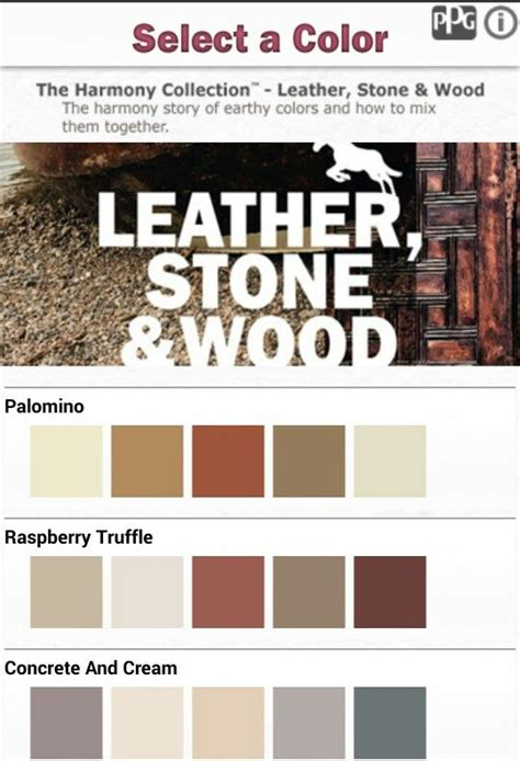 color combinations from ppg paint application leather wood neutrals color combos