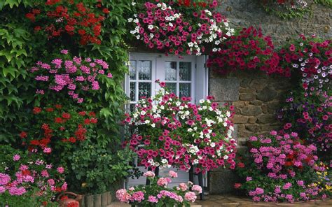 pic of flower gardens garden flowers garden plants hgtv 17 best images about gardens on