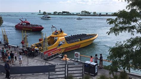 sea dog boat cruise chicago docked seadog speedboat chicago navy pier picture of