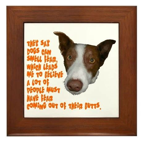 can dogs smell fear dogs can smell fear framed tile by admin cp9082460