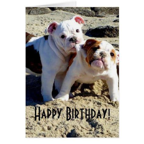 bulldog cards bulldogs puppy birthday cards zazzle