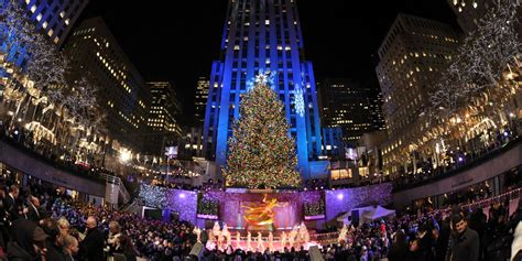 the rockefeller center christmas tree has been picked out