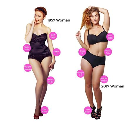 woman body size 60 bing images this is how the average british woman s body has changed