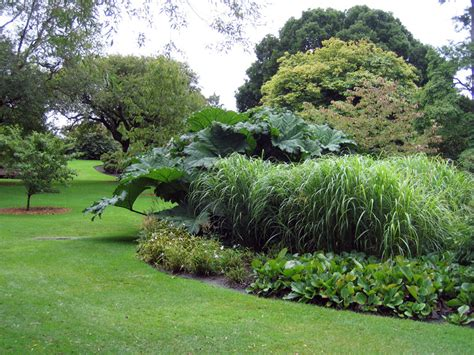 Royal Botanic Garden Edinburgh The Botanical Gardens Edinburgh