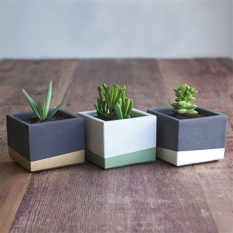 Ideas Design For Cement Planters Concept 665 Best Images About Vessels On Ceramics Raised Beds And Concrete Planters