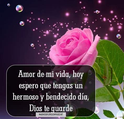 imágenes de buenos dias mi amor con rosas rosas amarillas de buenos d 237 as