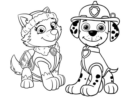 coloring pages of everest from paw patrol printable coloring pages paw patrol everest skye
