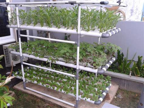 Jual Sekam Bakar Di Jogja hidroponik pengertian manfaat dan pembuatan nutrisi