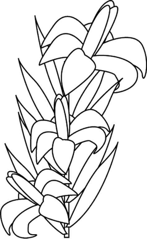 coloring pictures of easter lilies top news in coloring pages for easter