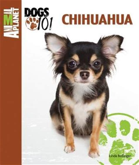 animal planet dogs 101 chihuahua animal planet dogs 101 by bollinger reviews discussion