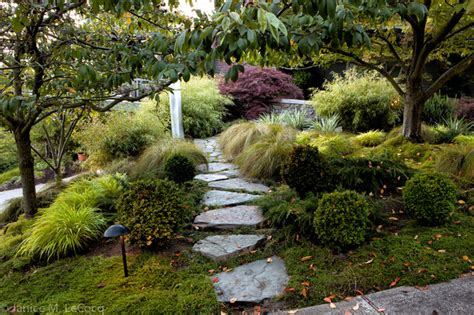 pacific northwest hillside garden traditional landscape other metro by form and foliage