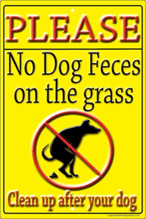 how to stop old dog from pooping in house dogs poo full of grass how to prevent dog separation anxiety