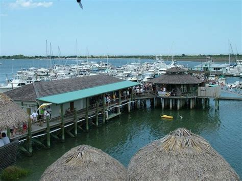 conch house marina welcome to conchland picture of the conch house marina resort saint augustine