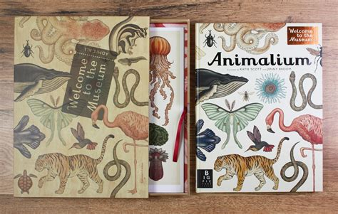 animalium welcome to the temaciarnia bibliomania 1