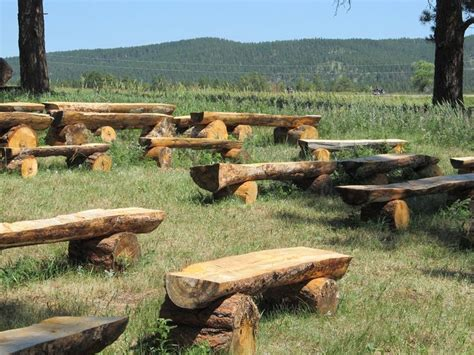 how to make benches out of logs tree log benches want to make these for around my