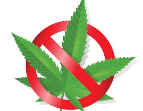 imagenes de fumar marihuana gobierno no a la marihuana legal