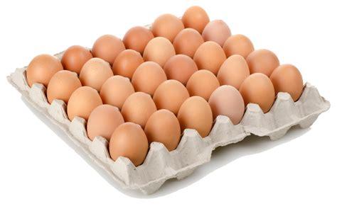 test it te lo pone a huevo the houses of parliament eoi arquitecto te lo ponemos a huevo ite edificios