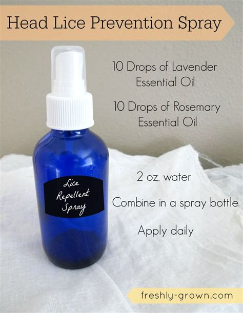 Detox Pest by 17 Best Images About Health Essential Oils On