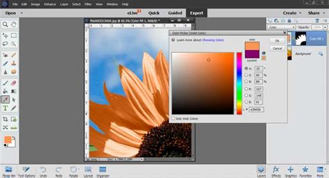 change pattern overlay color photoshop photoshop elements tutorial changing colors photoartfx