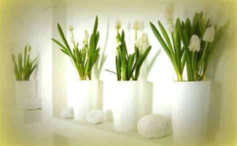 vasi per piante in resina vasi in resina homeimg it