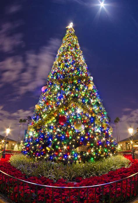 クリスマスツリー gatag フリー画像 写真素材集 3 0