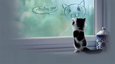 cat wallpaper with quotes cat meme quote funny humor grumpy kitten sad love mood