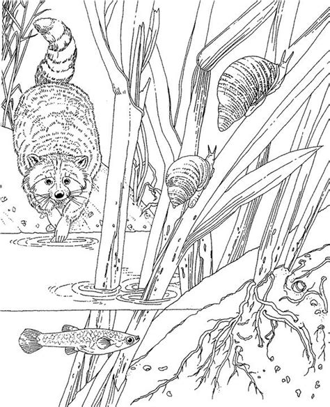 printable coloring pages for adults only seascape ocean coloring page